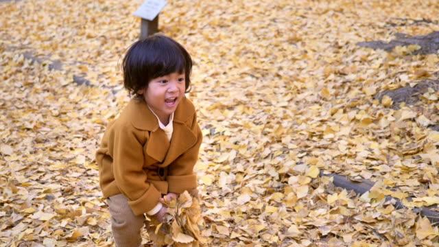 stockvideo's en b-roll-footage met het gelukkige jongen die en pret met de herfstbladeren in park speelt - one baby boy only