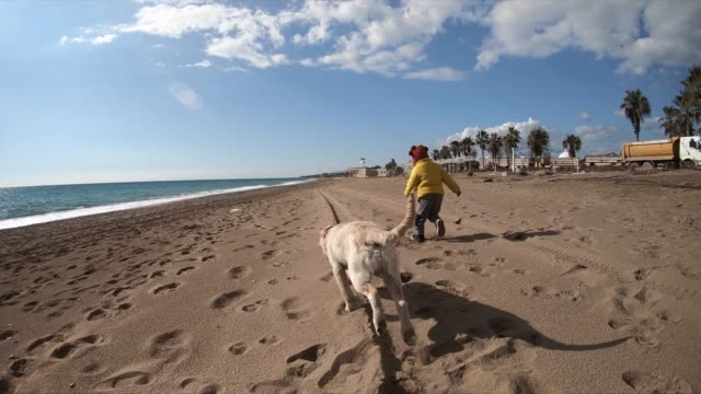 happy boy wit her dog running at the beach - middle east stock videos & royalty-free footage