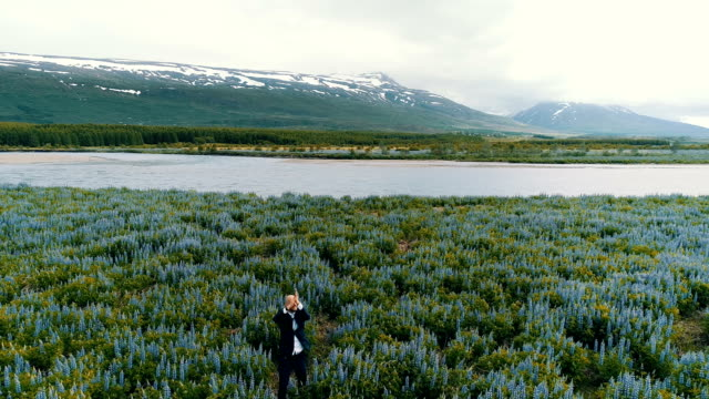happy businessman on a meadow full of flowers - sognare ad occhi aperti video stock e b–roll