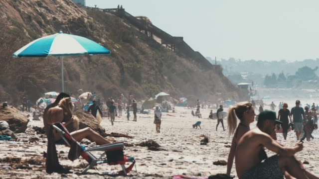 vídeos de stock e filmes b-roll de happy californians enjoying sunny day at the beach - san diego