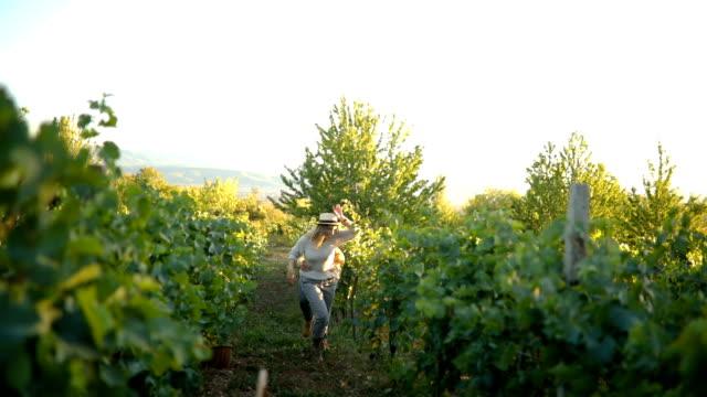 vídeos y material grabado en eventos de stock de feliz pareja alegre corriendo a través del viñedo - oficio agrícola