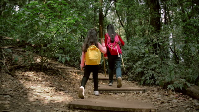 happy children girl journey hiking in the forest - family with two children stock videos & royalty-free footage