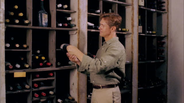 ms, happy couple choosing wine bottle in cellar, marlboro, new york state, usa - marlboro new york stock videos and b-roll footage