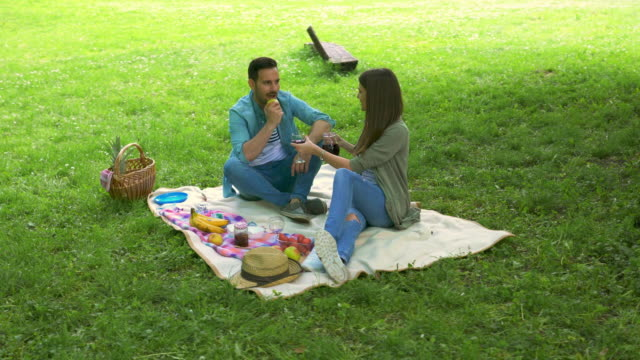 happy couple enjoying in picnic day in nature and toasting with red wine. - picnic stock videos & royalty-free footage
