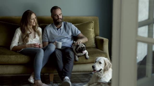 Happy couple sitting with dogs in living room