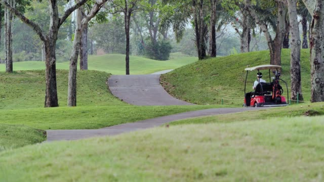 happy driving a golf-cart with clubs golf.sports cinemagraphs - cart stock videos & royalty-free footage