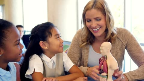 happy elementary schoolgirls learn about the human body in biology class - anatomy stock videos & royalty-free footage