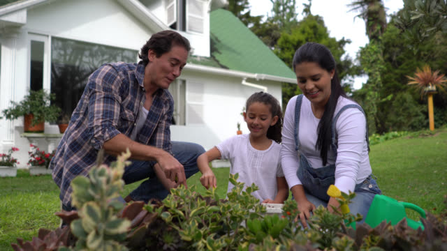 happy family gardening at their backyard and cute dog getting in the way - america latina video stock e b–roll