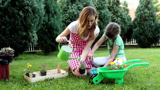 hd: happy family gardening in a backyard together. - watering can stock videos and b-roll footage
