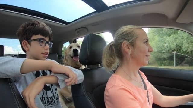 vidéos et rushes de famille heureuse allant sur un voyage de route avec des chiens - golden retriever