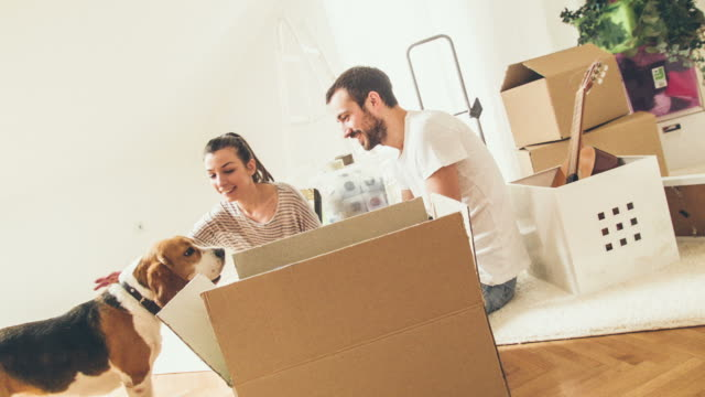 happy family moving in - box container stock videos & royalty-free footage