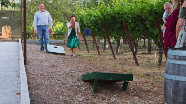 happy family playing bean bag toss beside vineyard - slow motion - bean bag stock videos & royalty-free footage