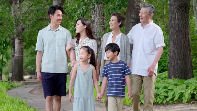 vídeos de stock, filmes e b-roll de happy family walking in park,4k - família de várias gerações