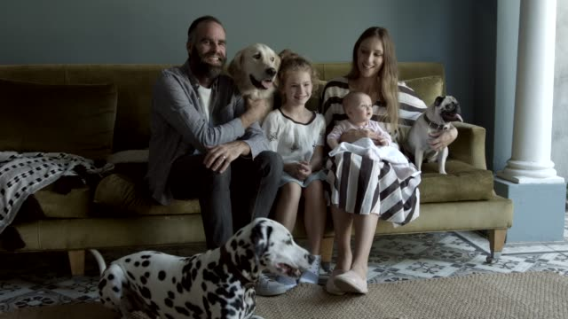 vidéos et rushes de happy family with dogs at home - canapé