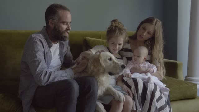 happy family with golden retriever on sofa - 8 9 jahre stock-videos und b-roll-filmmaterial