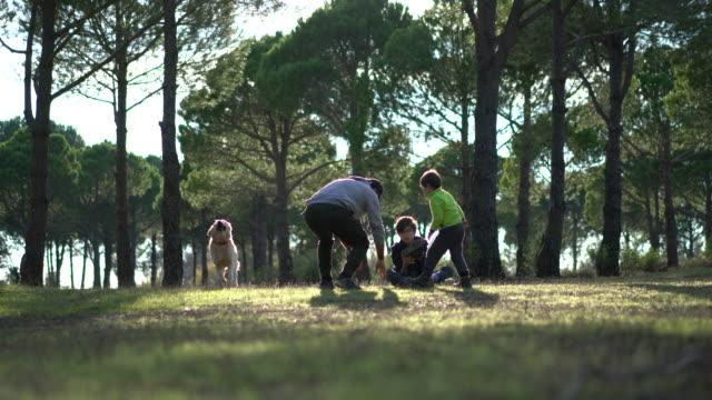 padre felice e ragazzi che giocano nella foresta con il suo cane. - one animal video stock e b–roll