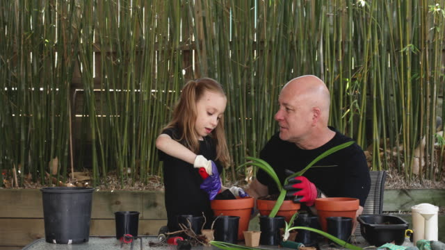 happy father and daughter gardening together - gardening stock videos & royalty-free footage