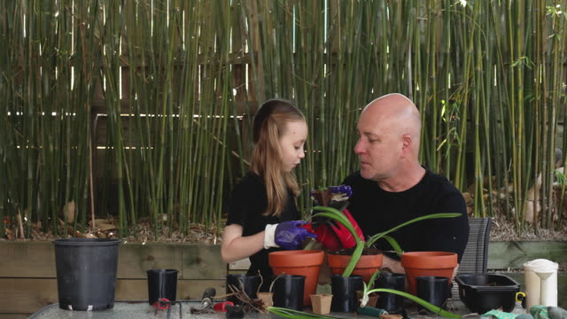 happy father and daughter gardening together - leisure activity stock videos & royalty-free footage