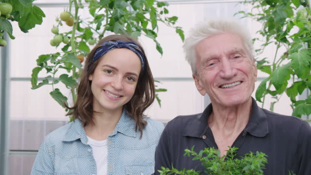happy father and daughter in greenhouse - local produce stock videos & royalty-free footage