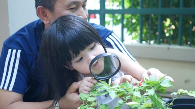 stockvideo's en b-roll-footage met gelukkig vader spelen met dochter - biologie