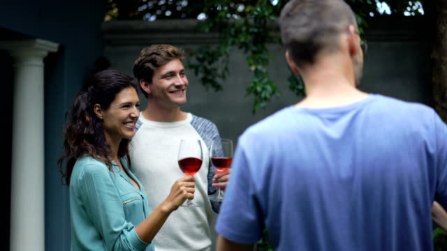 Happy friends toasting red wineglasses at yard