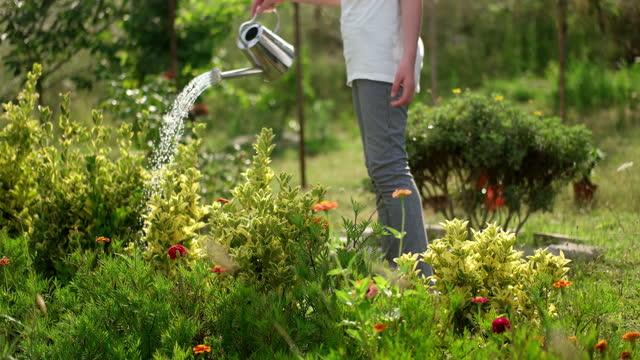 happy girl in garden - domestic garden stock videos & royalty-free footage