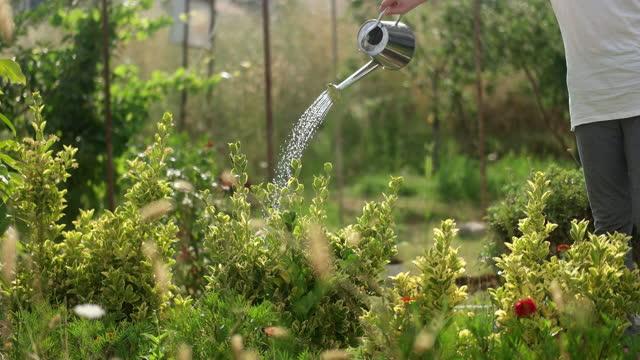 happy girl in garden - plant pot stock videos & royalty-free footage