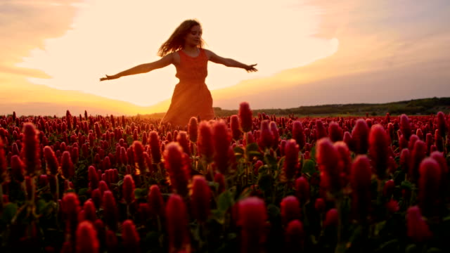 slo mo happy girl twirling among flowers at sunset - sundress stock videos & royalty-free footage