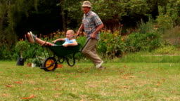 Happy grandfather and his granddaughter with a wheelbarrow