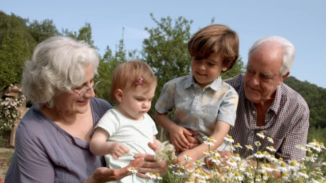 happy grandparents with children in yard - granddaughter stock videos & royalty-free footage