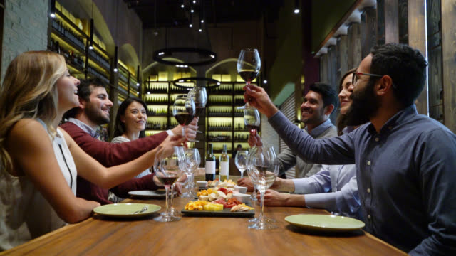 happy group of friends tasting wine and making a toast at a cellar - wine bar stock videos & royalty-free footage