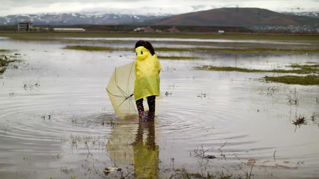 vídeos y material grabado en eventos de stock de feliz tipo lluvia - paraguas