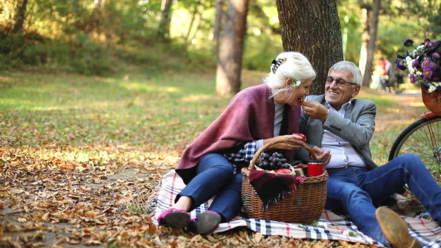 happy mature couple having picnic - hamper stock videos and b-roll footage