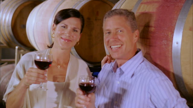 cu, happy mature couple tasting wine in cellar, portrait, marlboro, new york state, usa - marlboro new york stock videos and b-roll footage