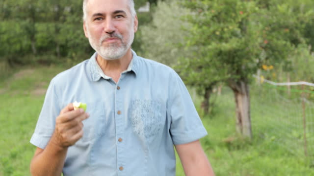 happy mature man walking on a meadow and eating homegrown organic apple - apple fruit stock videos & royalty-free footage