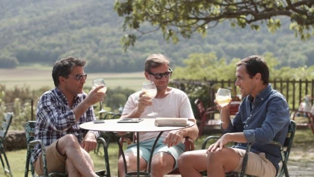 vídeos de stock e filmes b-roll de happy men relaxing while toasting drinks at table - dia