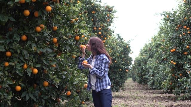 Happy mid adult women in orange garden