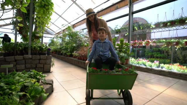 Happy mom and son buying plants at a vivarium and mother pushing a cartwheel with her son in it and some plants