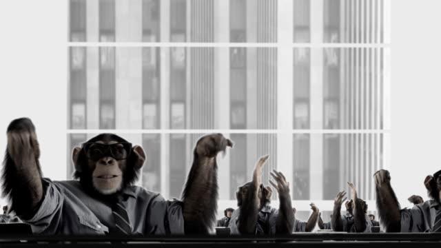 Negocios feliz mono