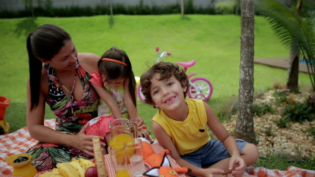 happy mother and children in a picnic - picnic stock videos & royalty-free footage