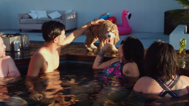 happy people enjoying hot tub at pool party - hot tub stock videos & royalty-free footage