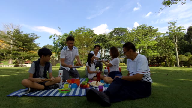 happy picnic at the park - malay family stock videos and b-roll footage