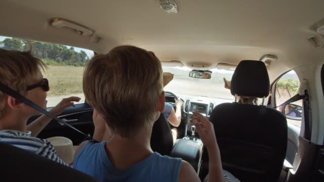 車で旅行ハッピー遊び心の子供たち - 楽しさ点の映像素材/bロール