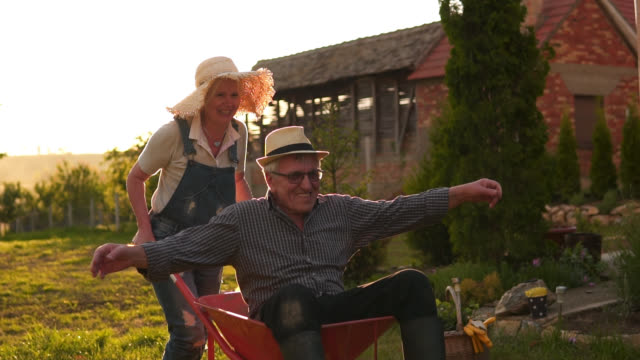 happy senior couple playing with a wheelbarrow in a sunny day - retirement stock videos & royalty-free footage