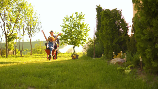 happy senior couple playing with a wheelbarrow in a sunny day - wheelbarrow stock videos and b-roll footage