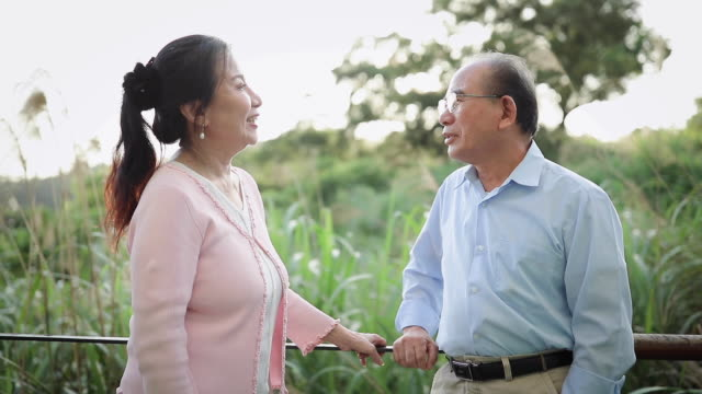 happy senior couple - 65 69 years stock videos & royalty-free footage