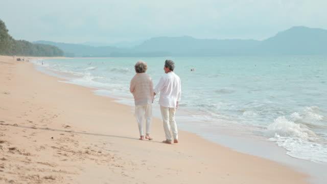 happy senior couple walking on beach,4k - dorso umano video stock e b–roll