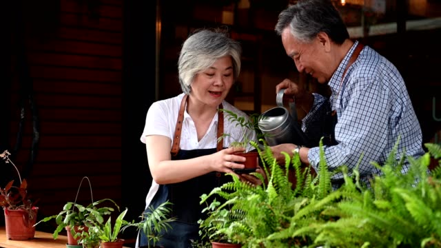 happy senior couple watering potted plant at cafe - focus on foreground stock videos & royalty-free footage