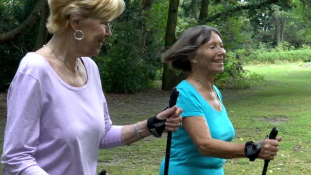 glücklich senior weibchen mit wanderstöcken gehen im park - zwei personen stock-videos und b-roll-filmmaterial