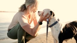 Happy senior woman petting dog on the beach at sunset